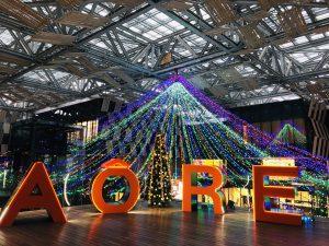アオーレ長岡 屋外オブジェ 大型 オレンジ ライトアップ AORE ロゴ プラダン イベント クリスマス イルミネーション